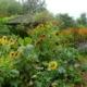 Jardins du Grand-Portage